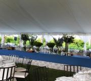 carpas para bodas azul