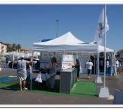 carpas plegables stand
